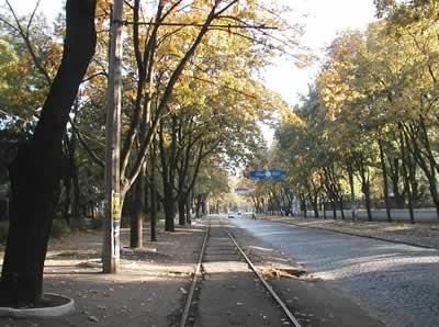 С 1 ноября по 1 декабря в Одессе будет временно закрыто движение автотранспорта по Французскому бульвару на участке...